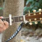 Guitarra. La Folie